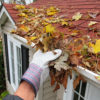 Roof Treatment and Cleaning Portland